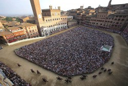 On Saturday, Contemporary Italy students visited Siena, where they learned about the world-famous Palio.