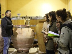 Learning-about-wine-small