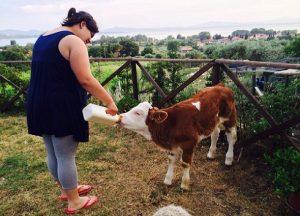 Agriturismo Orsini Volunteering Day #2 @ Azienda Agraria Orsini Flavio